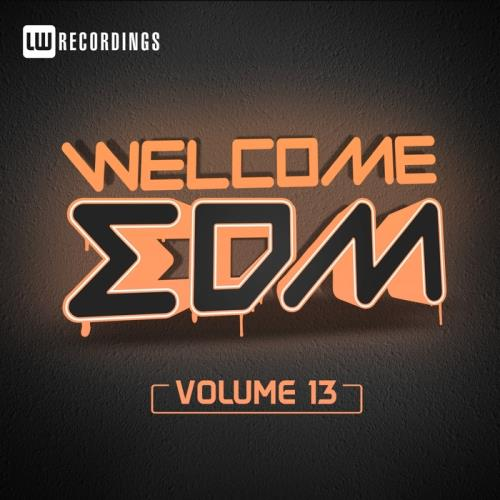 Welcome Edm, Vol. 13 (2017)