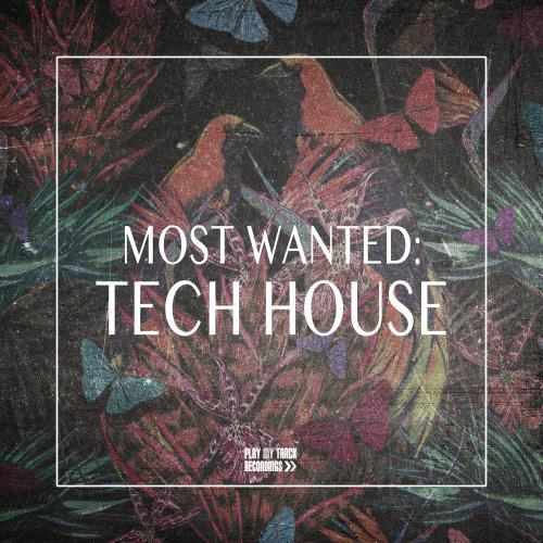 Most Wanted Tech House (2018)