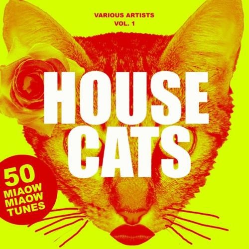 House Cats, Vol. 1 (50 Miaow Miaow Tunes) (2018)