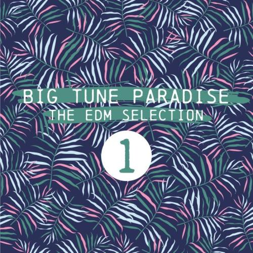 Big Tune Paradise (The EDM Selection, Vol. 1) (2018)