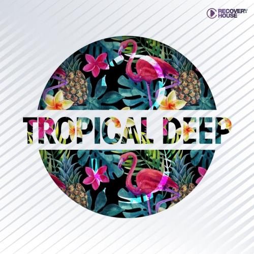 Tropical Deep, Vol. 3 (2019)